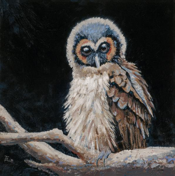 Brown Wood Owl (Original artwork) by Tracey Pacitti