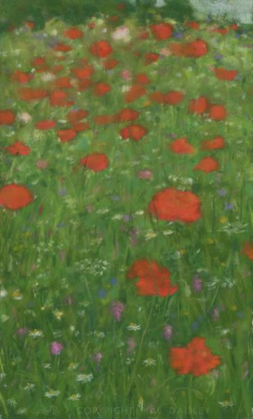 CORN POPPIES by Mal Daisley