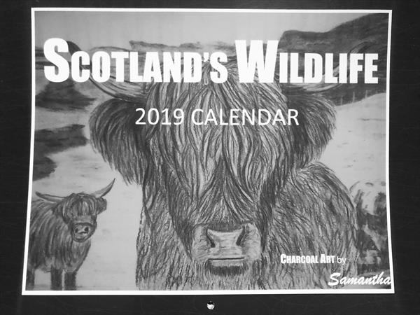 Wall Calendar 2019 by Samantha King