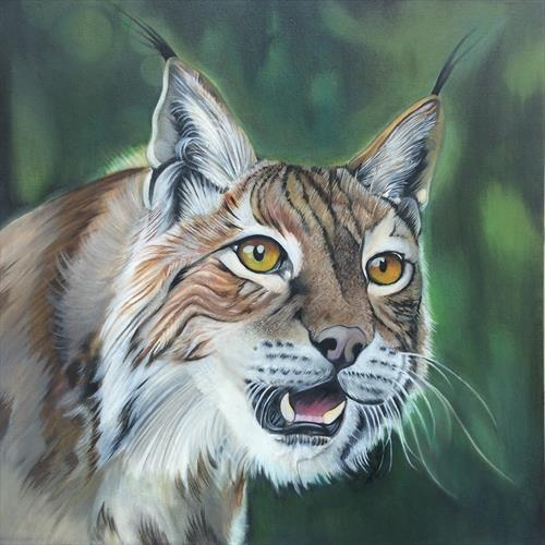 lynx oil painting by gareth miller