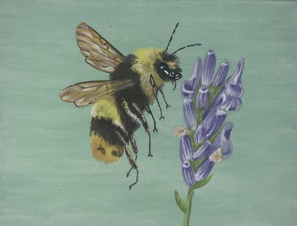 Cotswold Bee by Liz Corley