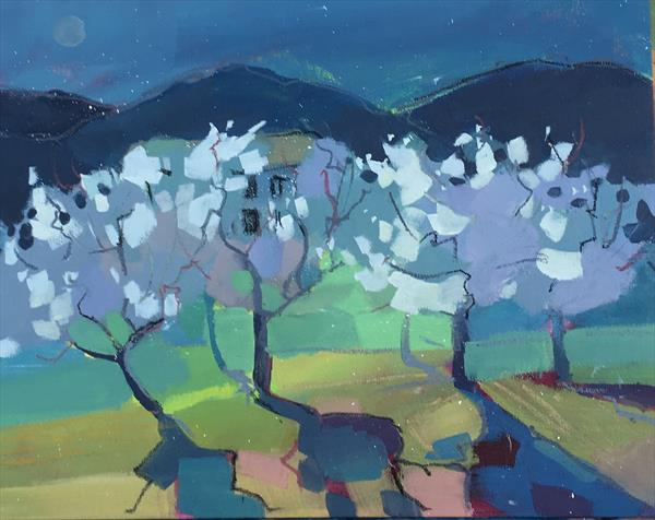 Almond Orchard At Dusk by Diana Davydova