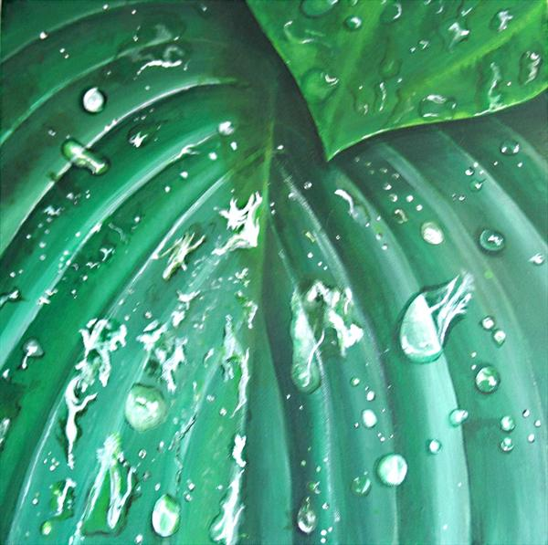 Raindrops On Hosta Leaves by Kate Esmarch