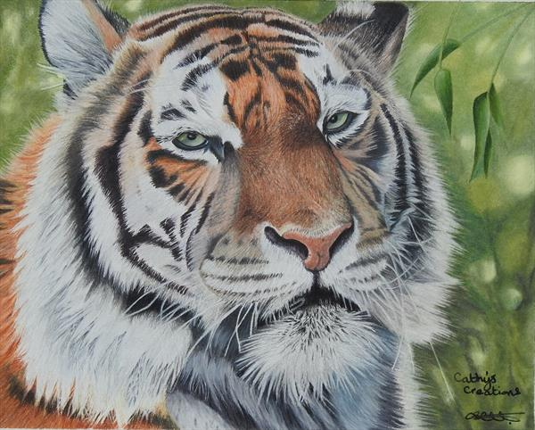Tiger by Cathy Settle