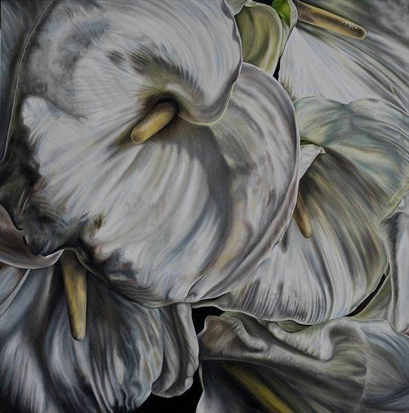 Calla Lily by Natalie Toplass