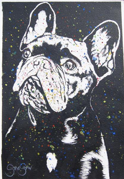 Contemplative Frenchie  by Steven Shaw