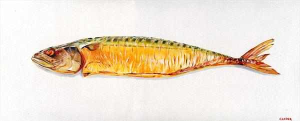 Smoked Mackerel by David Gander