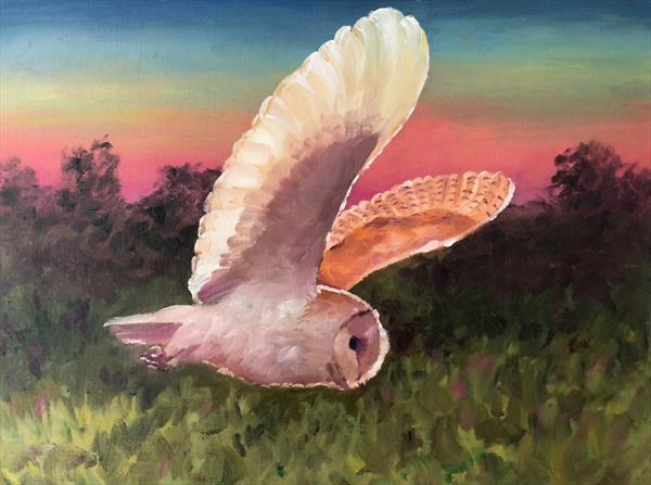 Owl at Sunset by Peter Kavanagh
