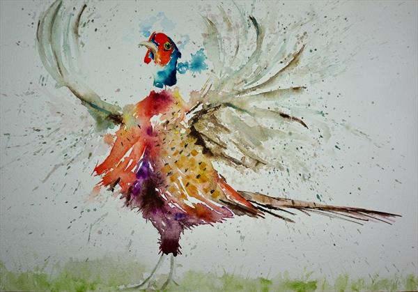 Pheasant - 'Orchestrating'