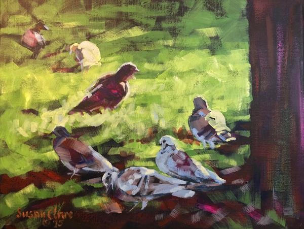 Pigeons in the Park by Susan Clare