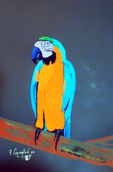 A Parrot  UNFRAMED by Frank Crompton