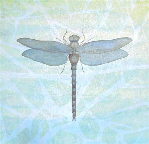 Dragonfly by Patricia Unwin