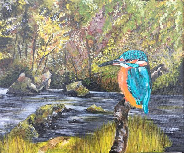 Kingfisher  by Jude Cottrell