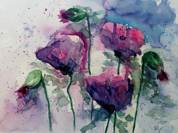 Poppies by Sue  Mobbs