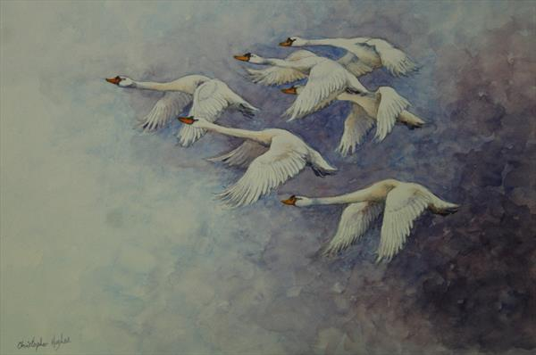 Flight of the Swans by Christopher Hughes