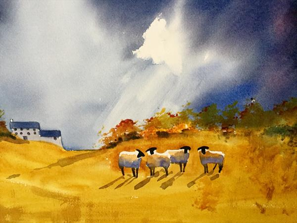 Golden fields under stormy skies by Susan Shaw