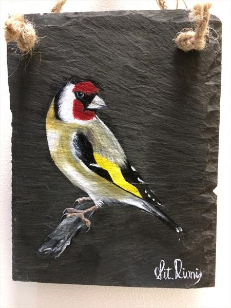 Goldfinch gift by Vitalie Nastas