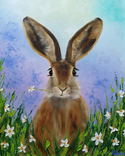 Hare in the daisies