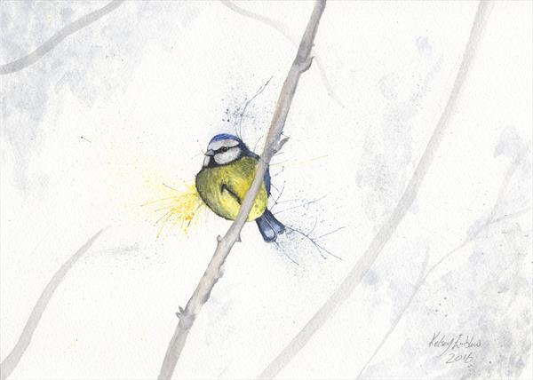 Blue Tit Watercolour by Kelsey Emblow
