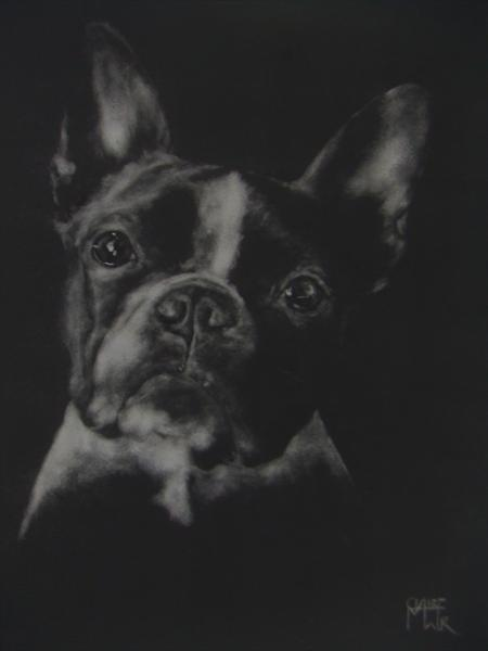 French Bulldog by Claire Mawer