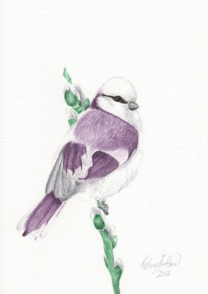 Purple Blue Tit Watercolour Painting by Kelsey Emblow