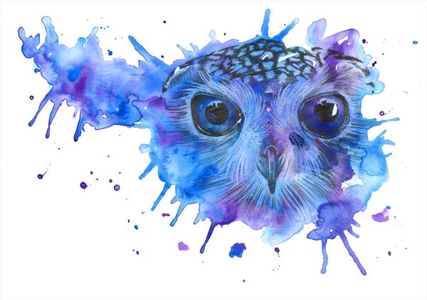 Galaxy Owl  by Leigh  Townsend