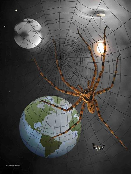 Spider In Space by Colin Park
