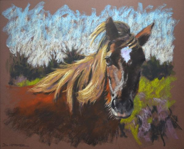 In The Bracken by Denise Mitchell
