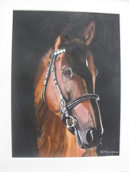 Frankel by William Maundrill