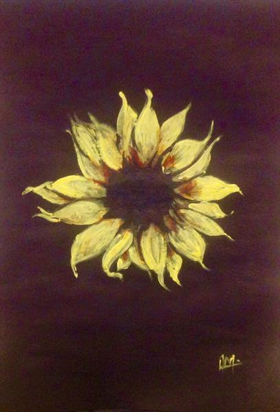 sunflower  by Anushree Mish