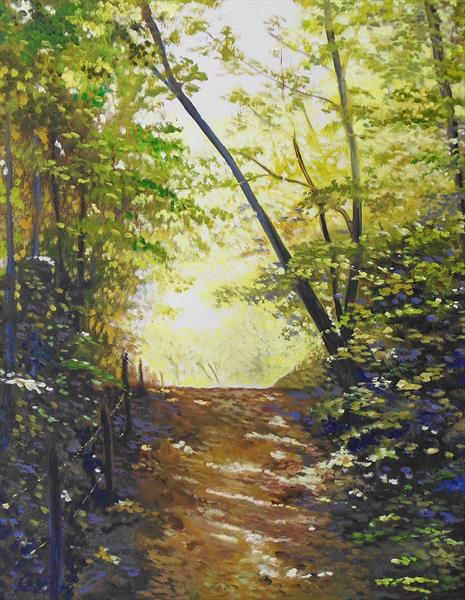 Path into the sunlight by Rod Bere