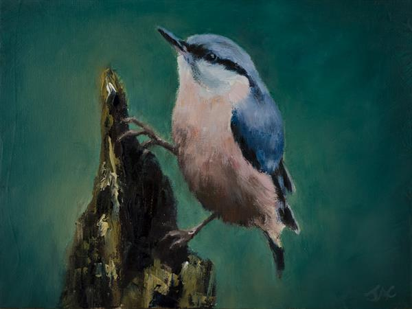 Nuthatch on Post by John Crabb
