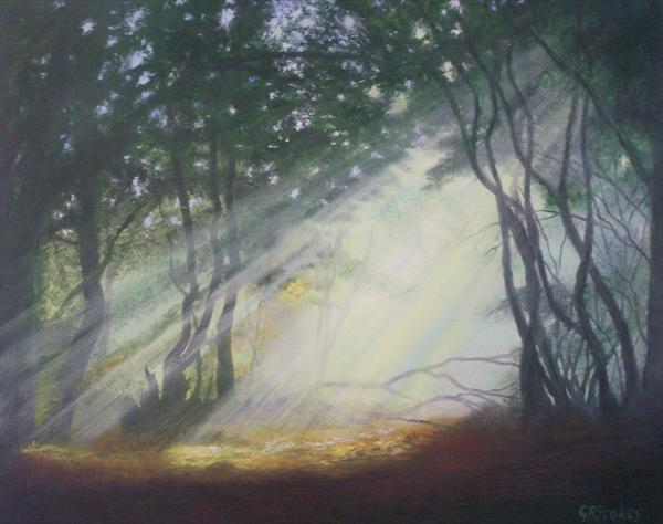 Early Morning Mist [in the Forest] by Gill Stokes