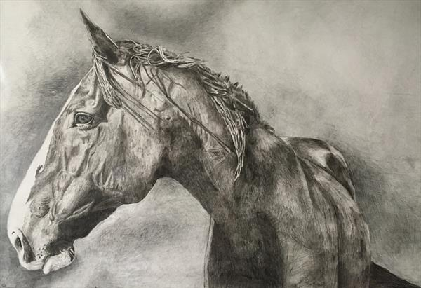 The horse by Sarah Roberts