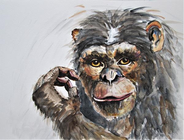 Chimpanzee. Ape, Monkey, Primate by Marjan's Art