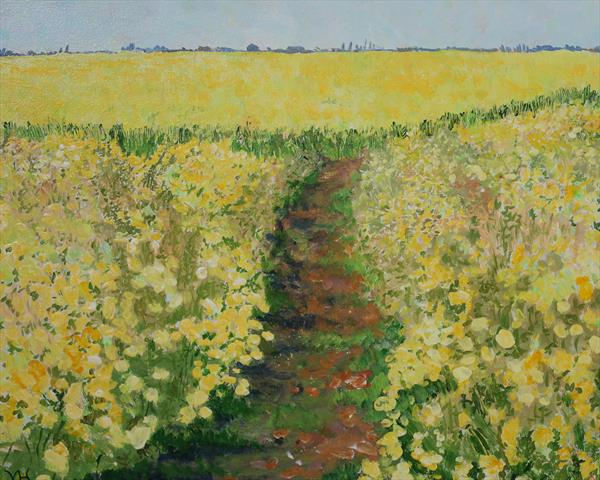 oil seed rape field by Veronica  Haldane