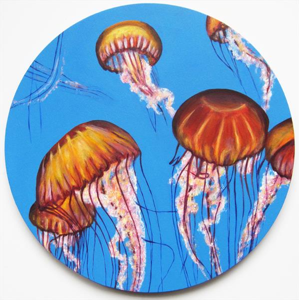 Pacific Sea Nettle Jellyfish by Jacqueline Talbot