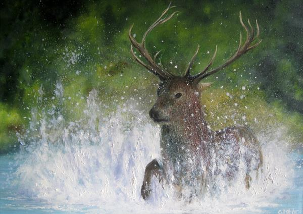 Startled Deer by Gill Stokes