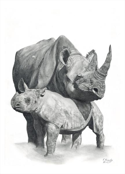 Mother and Baby Rhino by Frances Vincent