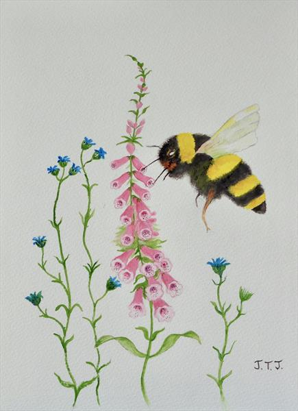 Bumble Bee and Foxfglove by Jean Tatton Jones