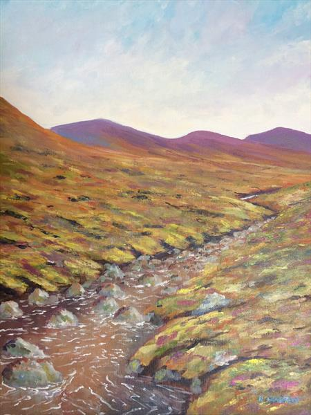 Wicklow mountain  steam III by Kevin Franklyn