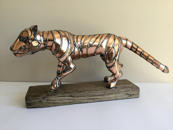 Tiger Tiger by Robert Batt