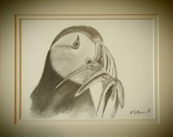 Feeding Time (Puffin) by Joanne Stewart
