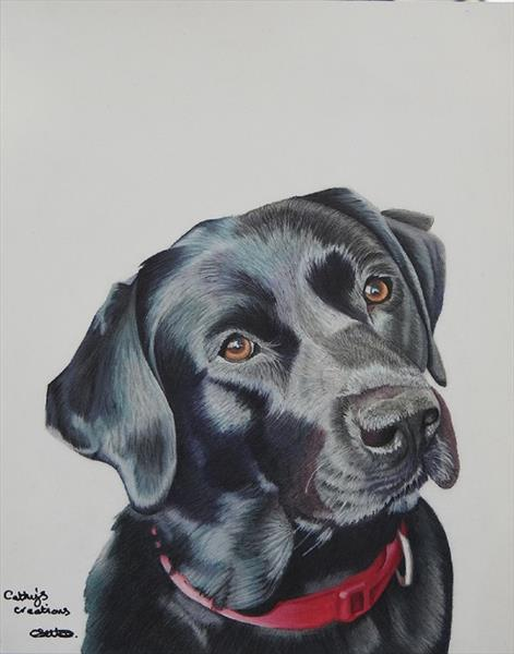 Indi the Black Labrador by Cathy Settle