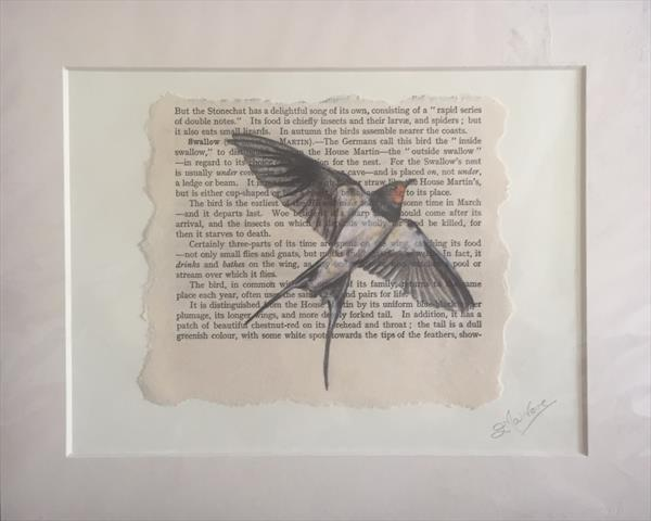Swallow Book Page Art by Lucy Malivoire