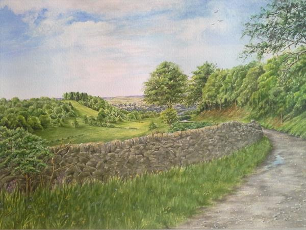 Dry Valley nr Bakewell by Jacqui  Vinay