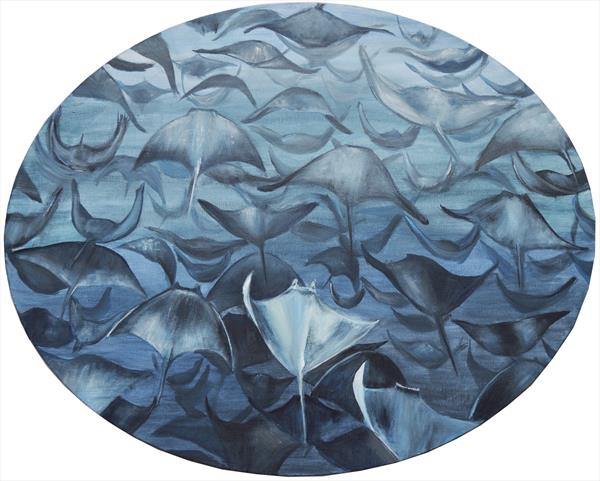 Mobula Ray Migration by Jacqueline Talbot