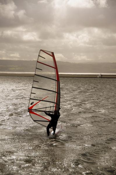 Wind Surfer by Rosie Gosden