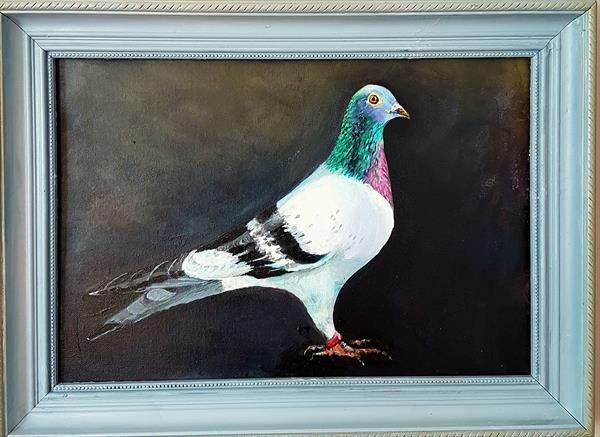 Pigeon by Shirley Wright