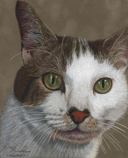 Jasper the cat by Cathy Settle